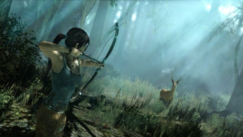 Tomb Raider fans shrunk rapidly when they discovered they could just use the internet to get their porn.